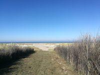 Dünenweg zum Strand